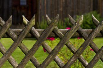 Der richtige Gartenzaun