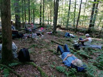 Entspannt in die neue Woche mit einem Spätsommer-Waldbad