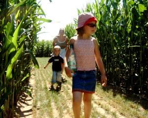 Irren im Mais - Maislabyrinth 2015