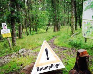 Flowtrail Bad Endbach öffnet am Sonntag wieder mit Teilstrecke!